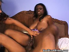 two busty black babes in a threesome