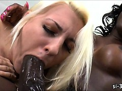 Chocolate Tranny Bombshell Chanel Couture Drills Pussy