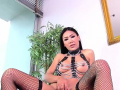 Solo Ladyboy Jerking While In Stockings
