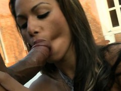 horny-sheboy-loves-anal-games-with-her-mighty-chap