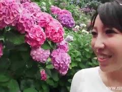 00474-w-h-sayuri
