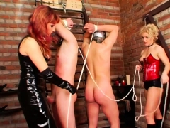 guy-gets-walked-around-on-a-chain-in-some-sexy-femdom-action