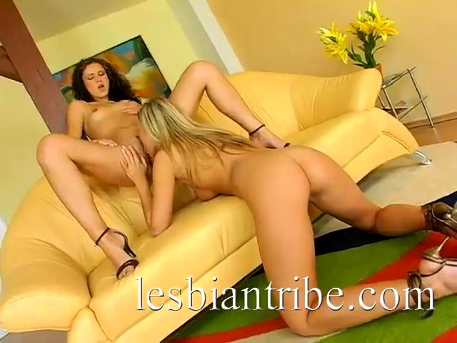 Andy And Michelle hot lesbians licking pussy